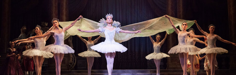 Photo Galleries - Ballet At Desert Botanical Gardens 2018